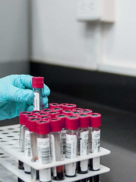À Bordeaux, le plus grand laboratoire d'analyses de France